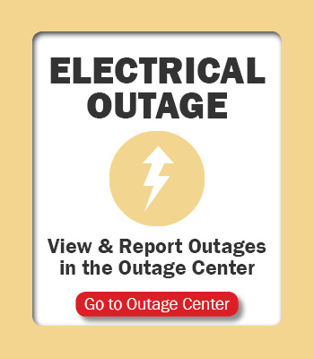 Outage Button Electrical