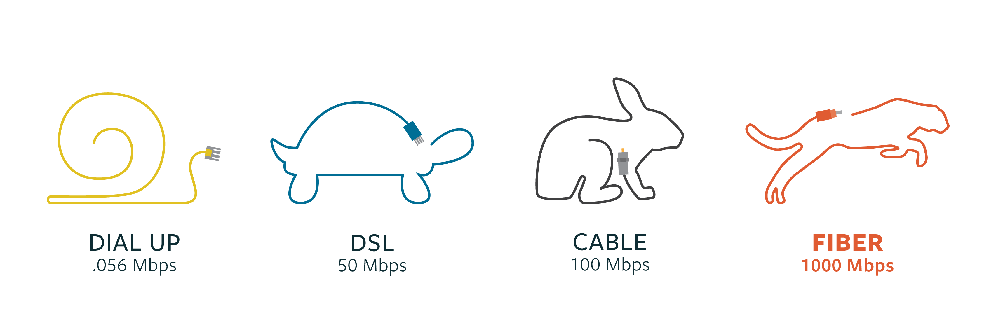 broadband speedanimals