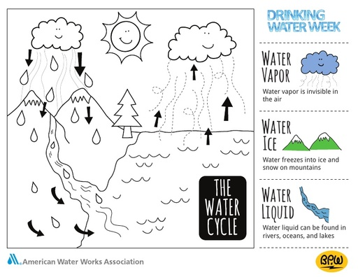 Coloring Page - The Water Cycle